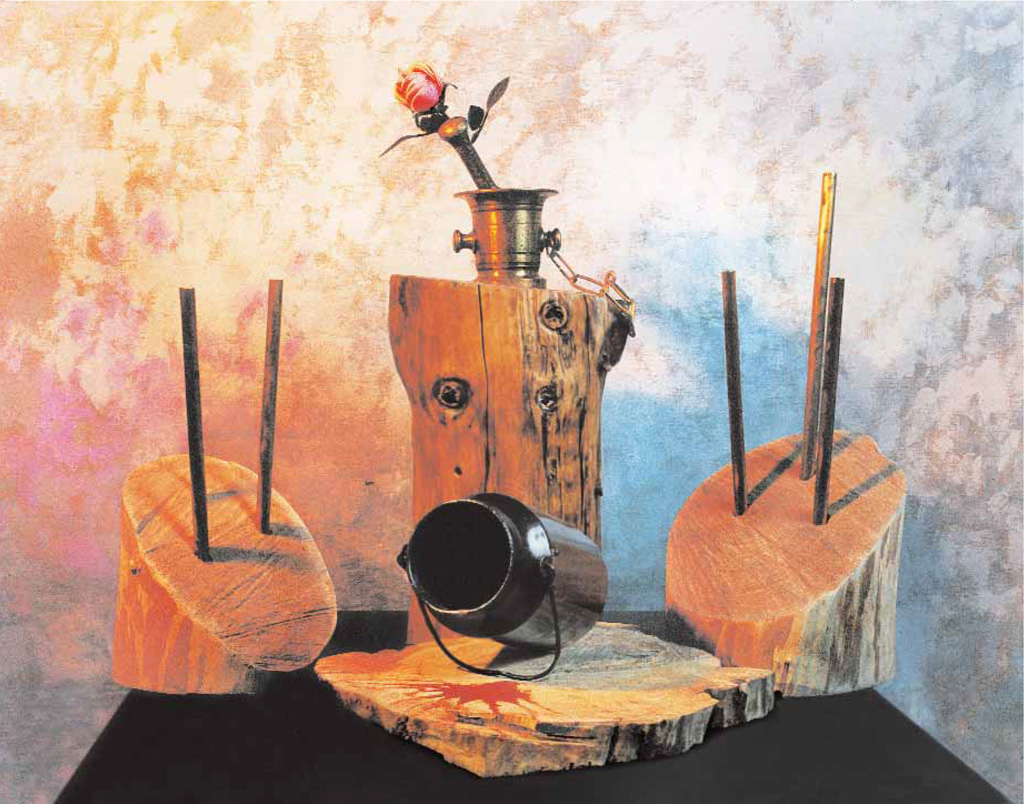 Is a beauty save the world? (wood, metal) 1995  600x600x600
